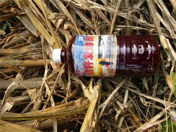 玉米秸秆堆腐还田